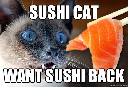 Sushi Cat Want Sushi Back Sushi Soon Quickmeme