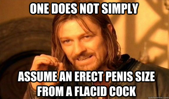 One does not simply assume an erect penis size from a flacid cock - One does not simply assume an erect penis size from a flacid cock  Boromir