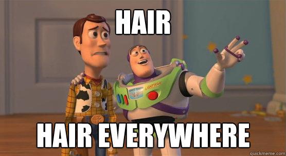 hair hair everywhere - hair hair everywhere  Toy Story Everywhere