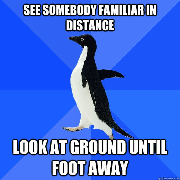 see somebody familiar in distance look at ground until foot away - see somebody familiar in distance look at ground until foot away  Socially Awkward Penguin