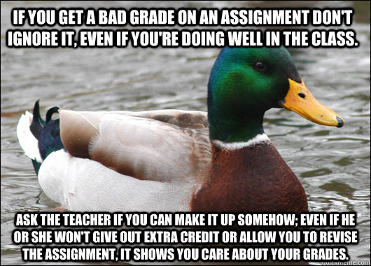 If you get a bad grade on an assignment don't ignore it, even if you're doing well in the class. Ask the teacher if you can make it up somehow; even if he or she won't give out extra credit or allow you to revise the assignment, it shows you care about yo - If you get a bad grade on an assignment don't ignore it, even if you're doing well in the class. Ask the teacher if you can make it up somehow; even if he or she won't give out extra credit or allow you to revise the assignment, it shows you care about yo  Actual Advice Mallard