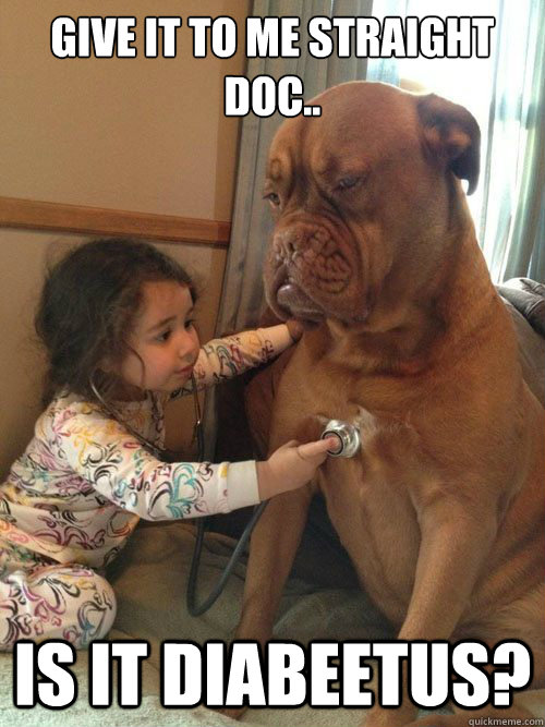 238a81fcd865fb579dd0ae832b4391c8bb17b0808fb4e4cea53058f670336278 give it to me straight doc is it diabeetus? sick dog quickmeme