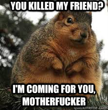 You killed my friend? I'm coming for you, motherfucker - You killed my friend? I'm coming for you, motherfucker  DGAF Fat Squirrel
