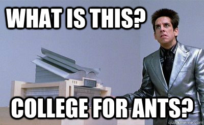 What is this? college for ants? - What is this? college for ants?  Zoolander