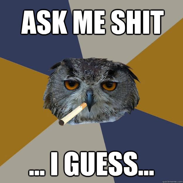 Ask Me Shit ... I guess...  Art Student Owl