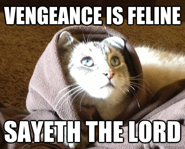 Vengeance is feline sayeth the Lord