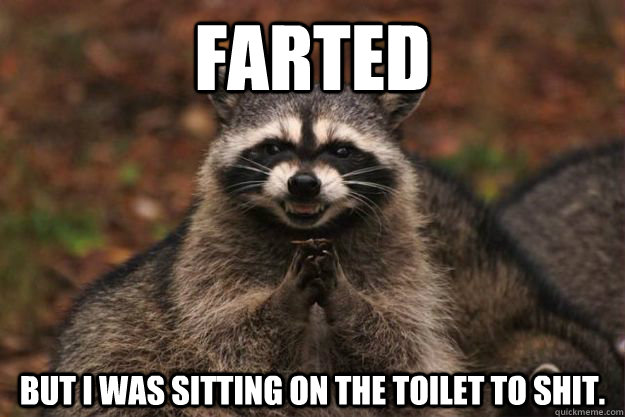 Farted But I Was sitting on the toilet to shit. - Farted But I Was sitting on the toilet to shit.  Evil Plotting Raccoon