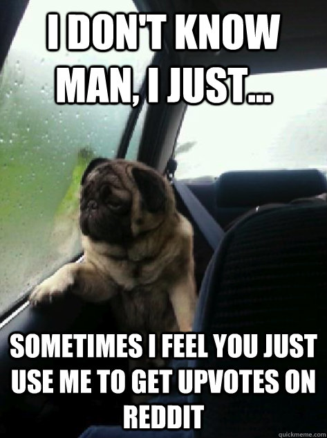 I don't know man, I just... sometimes i feel you just use me to get upvotes on Reddit - I don't know man, I just... sometimes i feel you just use me to get upvotes on Reddit  Introspective Pug