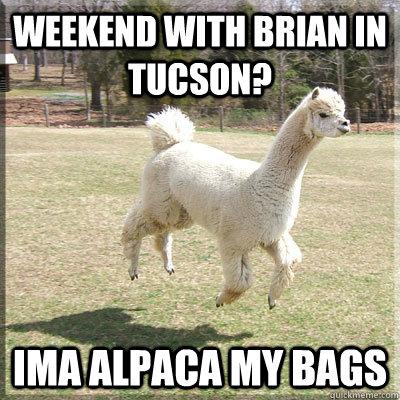 Weekend with Brian In Tucson? Ima Alpaca my bags - Weekend with Brian In Tucson? Ima Alpaca my bags  Alpaca bowl