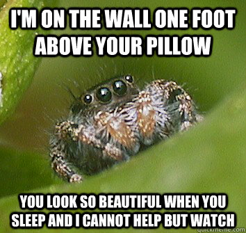 I'm on the wall one foot above your pillow You look so beautiful when you sleep and I cannot help but watch - I'm on the wall one foot above your pillow You look so beautiful when you sleep and I cannot help but watch  Misunderstood Spider