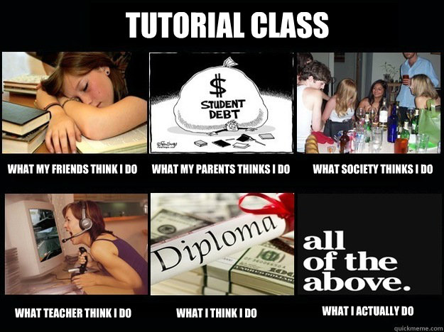 Tutorial Class What my friends think I do What my parents thinks I do What society thinks I do what teacher think I do what I think I do What I actually do