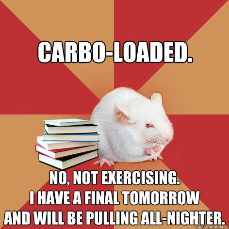 Carbo-loaded. No, not exercising. I have a final tomorrow and will be pulling all-nighter. - Carbo-loaded. No, not exercising. I have a final tomorrow and will be pulling all-nighter.  Science Major Mouse