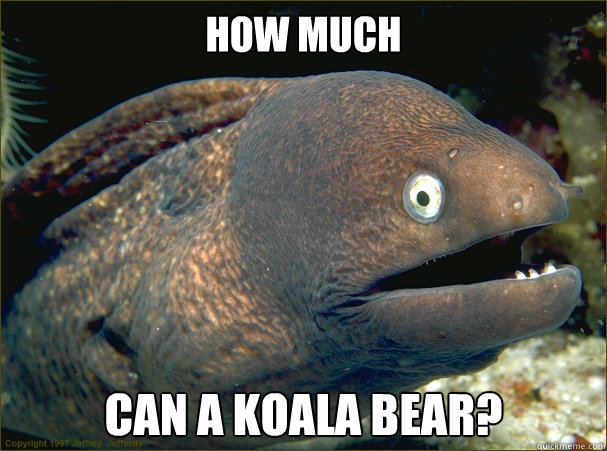 How much  can a Koala Bear?  Bad Joke Eel