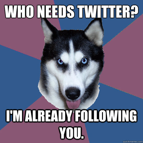 Who needs twitter? I'm already following you.  - Who needs twitter? I'm already following you.   Creeper Canine