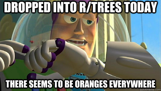 Dropped into r/trees today There seems to be oranges everywhere