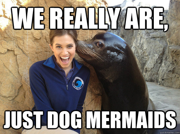 we really are, just dog mermaids - we really are, just dog mermaids  Crazy Secret