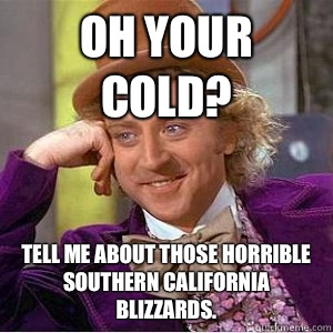 Oh your cold? Tell me about those horrible Southern California blizzards. - Oh your cold? Tell me about those horrible Southern California blizzards.  wonks