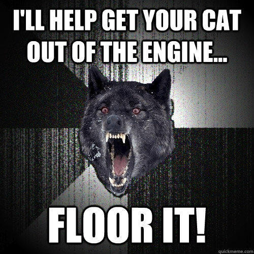 I'll help get your cat out of the engine... Floor it! - I'll help get your cat out of the engine... Floor it!  Insanity Wolf