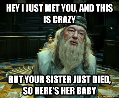 Hey I just met you, and this is crazy but your sister just died, so here's her baby - Hey I just met you, and this is crazy but your sister just died, so here's her baby  Scumbag Dumbledore