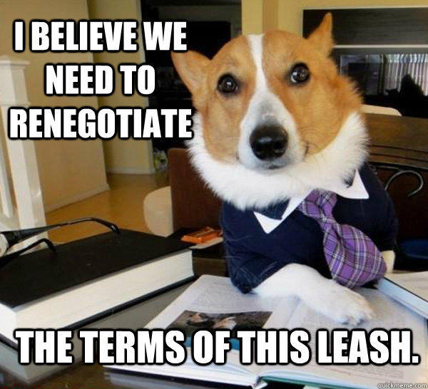 I believe we need to renegotiate the terms of this leash. - I believe we need to renegotiate the terms of this leash.  Lawyer Dog