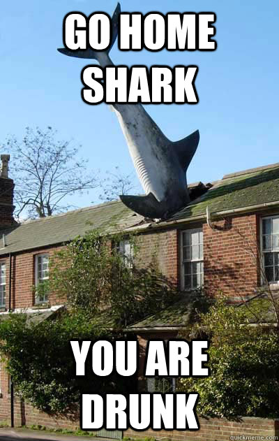 Go home shark You are drunk - Go home shark You are drunk  Misc