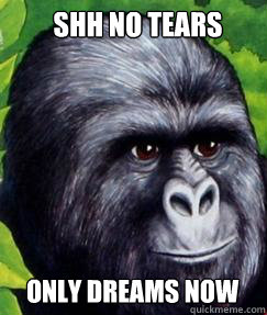 Shh no tears Only dreams now   gorilla munch