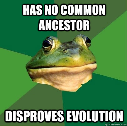Has no common ancestor Disproves evolution - Has no common ancestor Disproves evolution  Foul Bachelor Frog