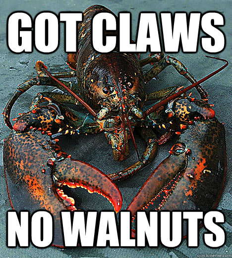 got claws no walnuts