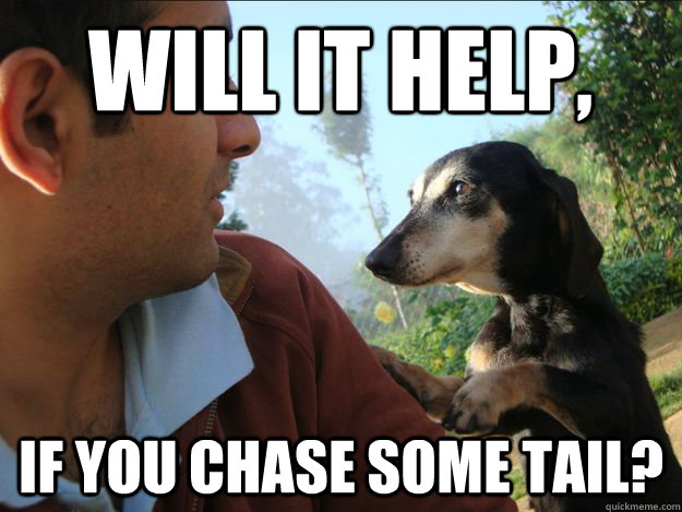 WIll it help, If you chase some tail?