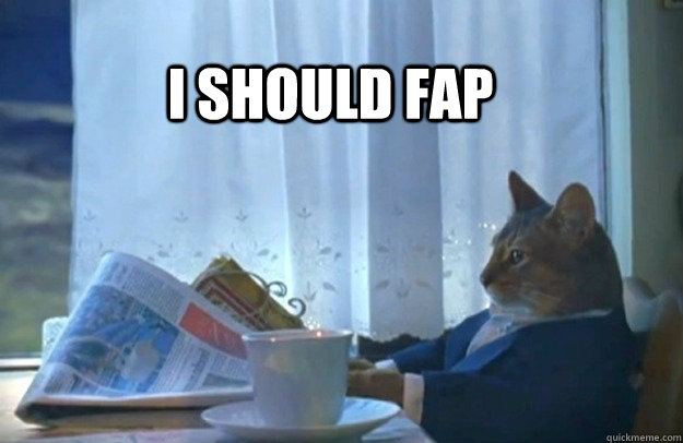 I should Fap - I should Fap  Sophisticated Cat