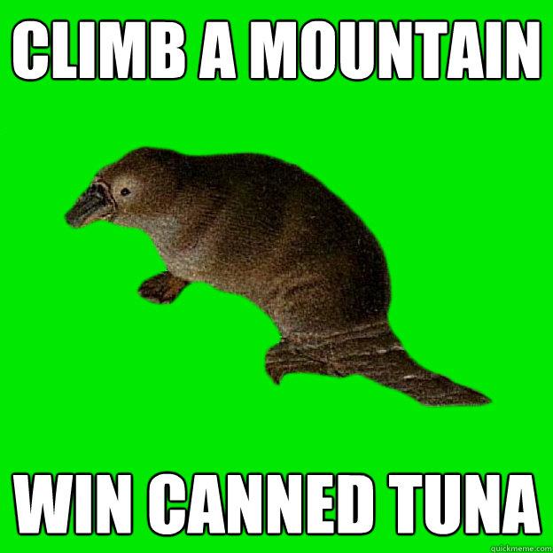 Climb a mountain Win Canned Tuna  Non-sequitur Platypus