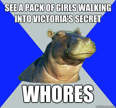 See a pack of girls walking into victoria's secret whores  Skeptical Hippo