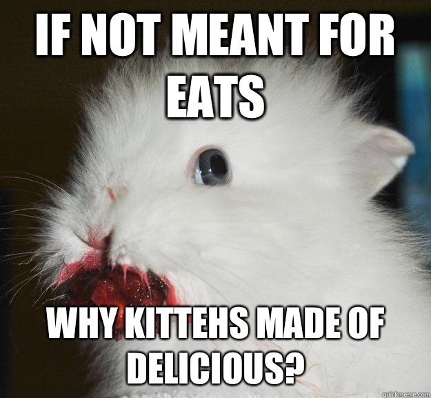 If not meant for eats Why kittehs made of delicious? - If not meant for eats Why kittehs made of delicious?  Murder Bunny