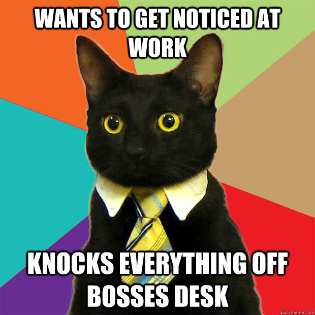 Wants to get noticed at work knocks everything off bosses desk - Wants to get noticed at work knocks everything off bosses desk  Business Cat