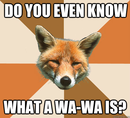Do you even know what a Wa-Wa is? - Do you even know what a Wa-Wa is?  Condescending Fox