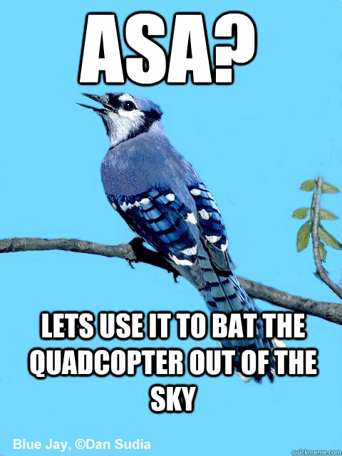 ASA? Lets use it to bat the quadcopter out of the sky - ASA? Lets use it to bat the quadcopter out of the sky  Blue Team Bird
