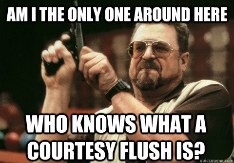 Am I the only one around here who knows what a courtesy flush is? - Am I the only one around here who knows what a courtesy flush is?  Am I the only one
