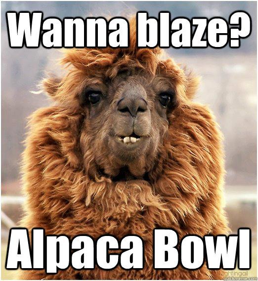 Wanna blaze? Alpaca Bowl - Wanna blaze? Alpaca Bowl  Misc