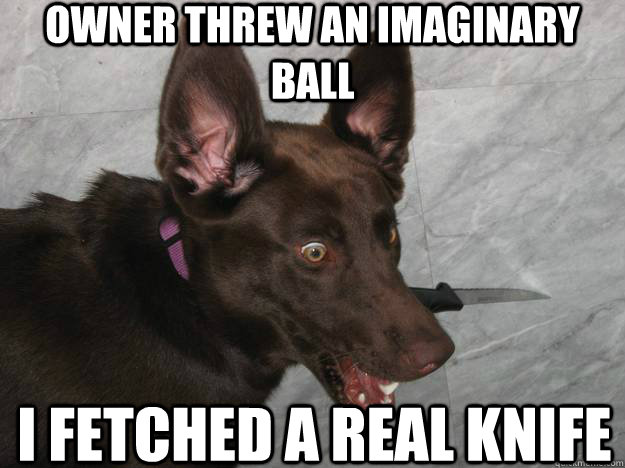 Owner threw an imaginary ball I fetched a real knife