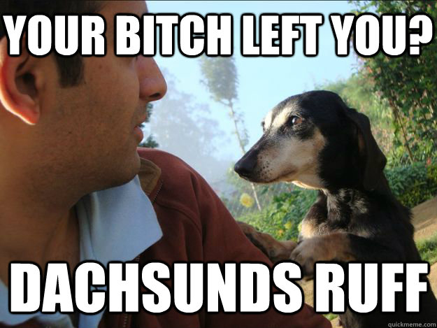 Your bitch left you? Dachsunds ruff