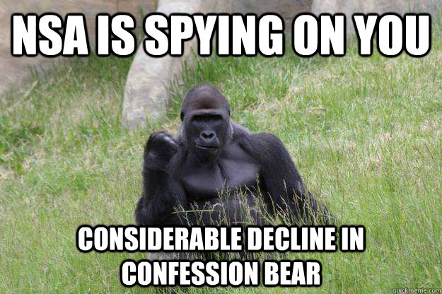 NSA is spying on you Considerable decline in confession bear  Success Gorilla