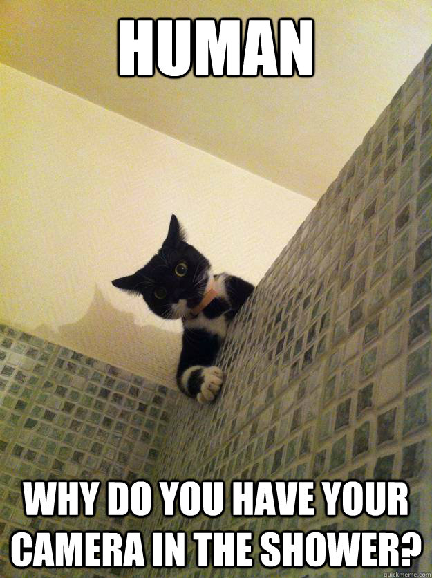 human Why do you have your camera in the shower? - human Why do you have your camera in the shower?  Incredulous Cat