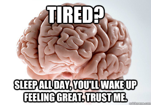 Tired? Sleep all day, you'll wake up feeling great. Trust me.  Scumbag Brain