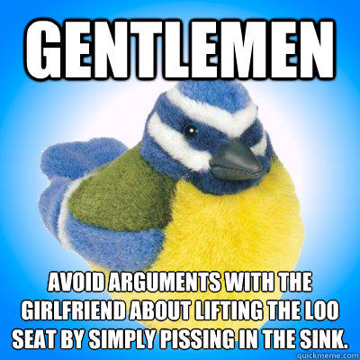 Gentlemen Avoid arguments with the girlfriend about lifting the loo seat by simply pissing in the sink.  - Gentlemen Avoid arguments with the girlfriend about lifting the loo seat by simply pissing in the sink.   Top Tip Tit