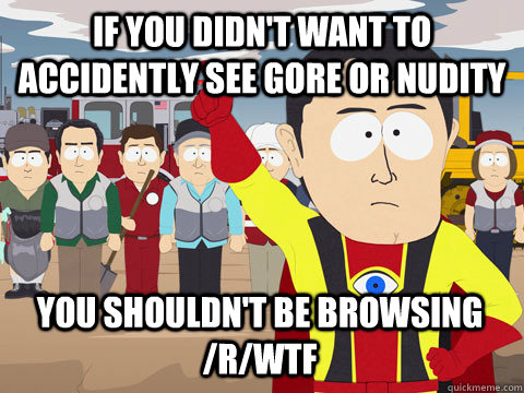 if you didn't want to accidently see gore or nudity You shouldn't be browsing /r/wtf - if you didn't want to accidently see gore or nudity You shouldn't be browsing /r/wtf  Captain Hindsight