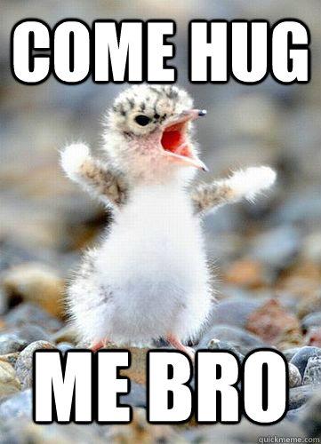 come hug me bro  hug me