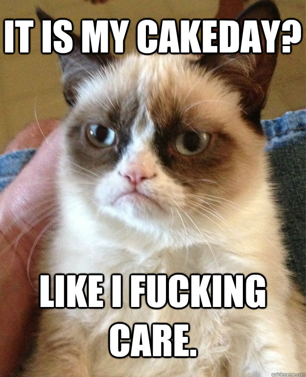 It is my cakeday? Like I fucking care. - It is my cakeday? Like I fucking care.  Grumpy Cat