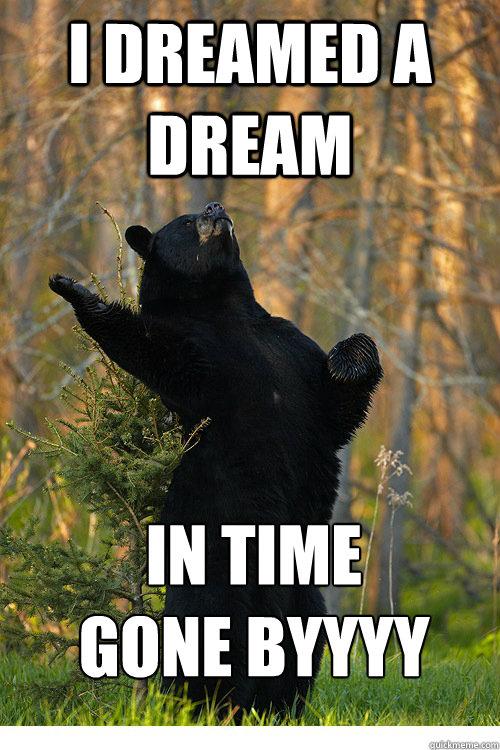 I DREAMED A DREAM IN TIME  GONE BYYYY  Fabulous Bear