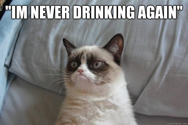 im never drinking again meme