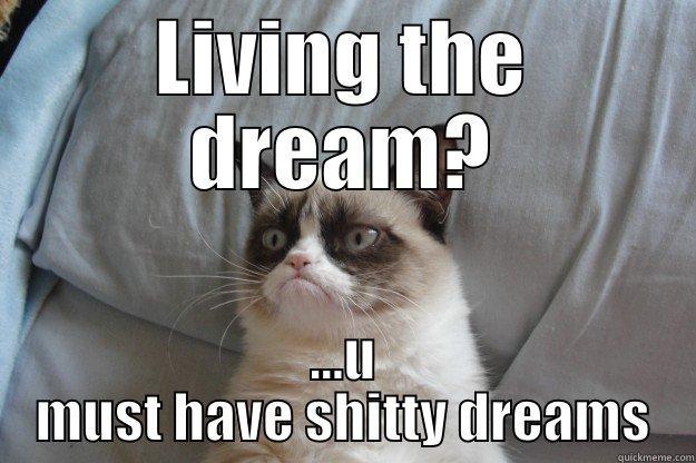 Living The Dream Quickmeme